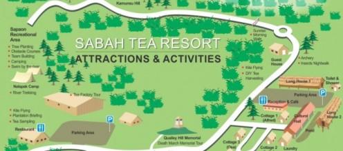 day3-sabah-tea-garden